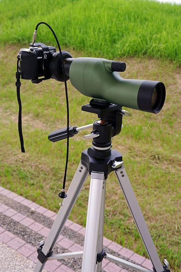 Mengenal digiscoping ketika kamera bergabung dengan teleskop atau mikroskop